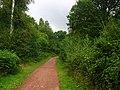Old railway, Cannop. - geograph.org.uk - 52958.jpg