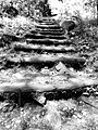 Olympus Path.jpg