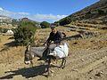 On way from Apeiranthos to Moni Fotodotis, Naxos, 13M513.jpg