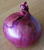 Onion Red Baron.JPG