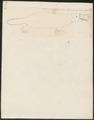 Ornithorhynchus fuscus - 1700-1880 - Print - Iconographia Zoologica - Special Collections University of Amsterdam - UBA01 IZ20300174.tif