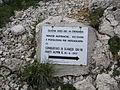 Ortigara l Vallon dell'Agnellizza.jpg