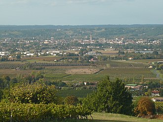 Bergerac wine - View of the vineyards from the Château of Monbazillac, with Bergerac in the background.