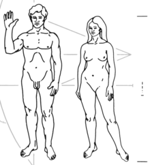 Humans depicted on the Pioneer plaque