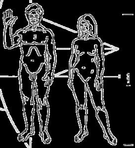 ジェンダー's relation image