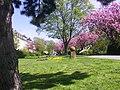 Paderborn Promenade Liboriberg Mai 2006.jpg