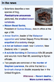 Paedophryne amauensis In the news - English with image.png