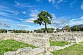 Paestum Temples (Italy, October 2020) - 18 (50561599213).jpg