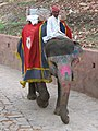 Painted elephant at Jaipur.jpg