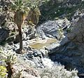Palm Canyon waterfall 2.jpg