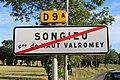 Panneau sortie Songieu Haut Valromey 2.jpg
