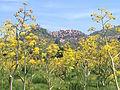 Panorama di Castiglione di Sicilia.JPG
