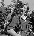Papagaai-dragers in Artis, Bestanddeelnr 904-6781.jpg