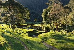 Blumenau - Parque Nacional da Serra do Itajaí
