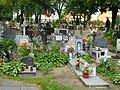 Pasłęk cmentarz stary.JPG