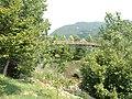 """Passerella """"Crespi"""" - panoramio.jpg"""