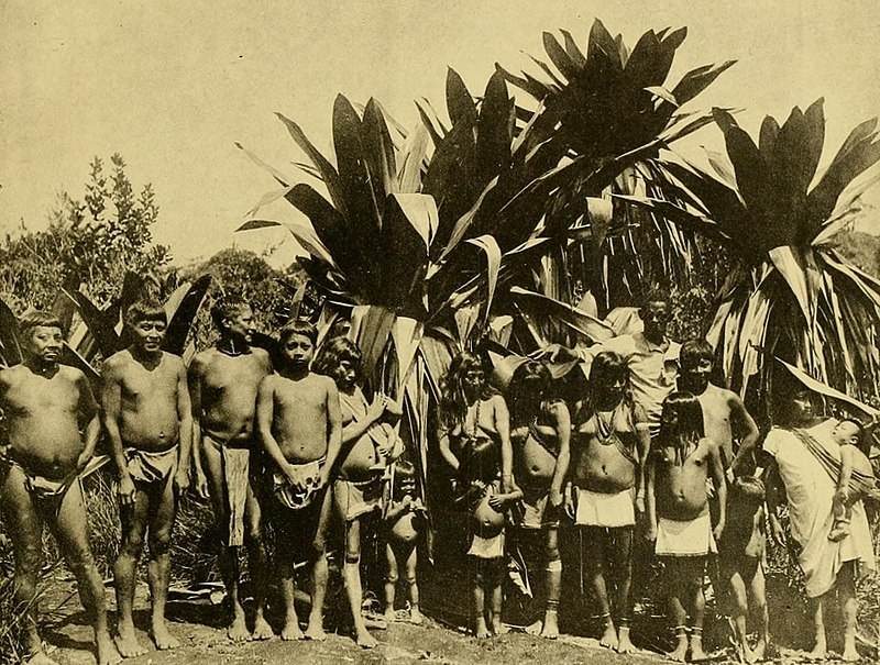 Patamona indians on the kaieteur plateau