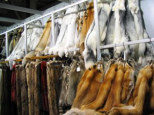 Different fur skins at the fair Mifur in Milano.