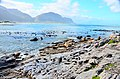 Penguin colony in Hermanus 01.jpg
