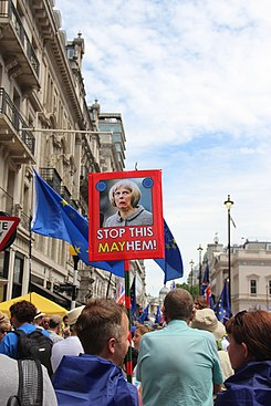 PeoplesVoteMarch IMG 6840 (28140974417).jpg