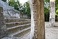 Petén Campechano, Calakmul, Campeche (22173292326).jpg