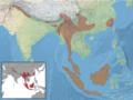 Petaurista petaurista distribution (colored, filled).png