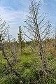 Pictured Rocks National Lakeshore (3e334037-6506-498c-b4f4-e0833753adcd).jpg
