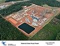 Piedmont-plant.jpg