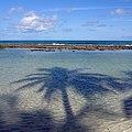 Piscina natural da Praia de Carneiros - PE, Brasil.jpg