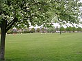 Playing Field - New Park View - geograph.org.uk - 1286259.jpg