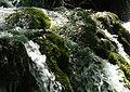 Plitvička jezera 0017.jpg