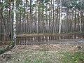Pludi druvciema 2011 - panoramio (45).jpg