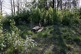 Suraż - Image: Poland Suraż Jewish Cemetery