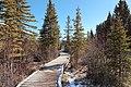 Policemans Creek Canmore Walkway Alberta Canada (16440802317).jpg