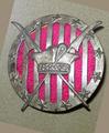 Polish 7th Air Escadrille emblem.PNG