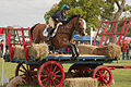 Polly stockton regulus farmyard badminton 2009.jpg