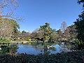 Pond in Auburn Botanic Garden.jpg