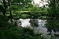 Pond on Barn Farm, Curbridge - geograph.org.uk - 451082.jpg