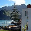 Porto da Cruz, Madeira - 2013-01-11 - 86137661.jpg