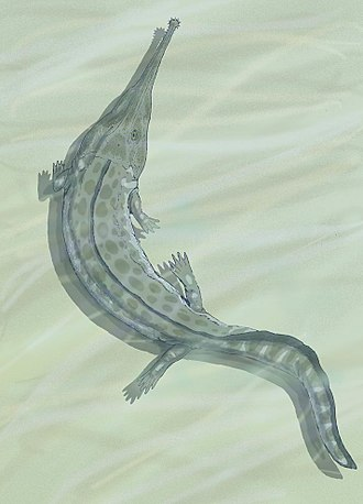 Temnospondyli - Prionosuchus from the Permian, the largest batrachomorph ever described