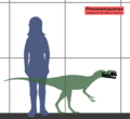 Proceratosaurus estimated size.png