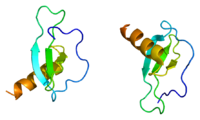 Protein CCL17 PDB 1nr2.png