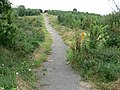 Public footpath across Bagworth Heath - geograph.org.uk - 542244.jpg