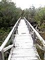 Puente en la ruta Quiao-Chanquín 01.jpg
