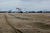 Pumpjacks on Leduc-Woodbend Oilfield.JPG