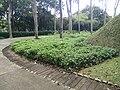 Putrajaya's Botanical Garden 30.jpg