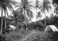 Queensland State Archives 1253 Campers on Green Island near Cairns c 1935.png