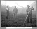 Queensland State Archives 3100 Clearing the site of the south main pier Brisbane c 1935.png