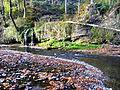 Rüti - Jona 20061104 002.jpg