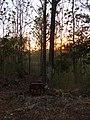 RVR, Escondido - panoramio.jpg